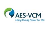 AES-VCM